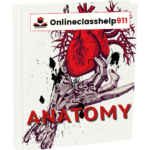 Write My Paper | Anatomy And Physiology Essay Generator